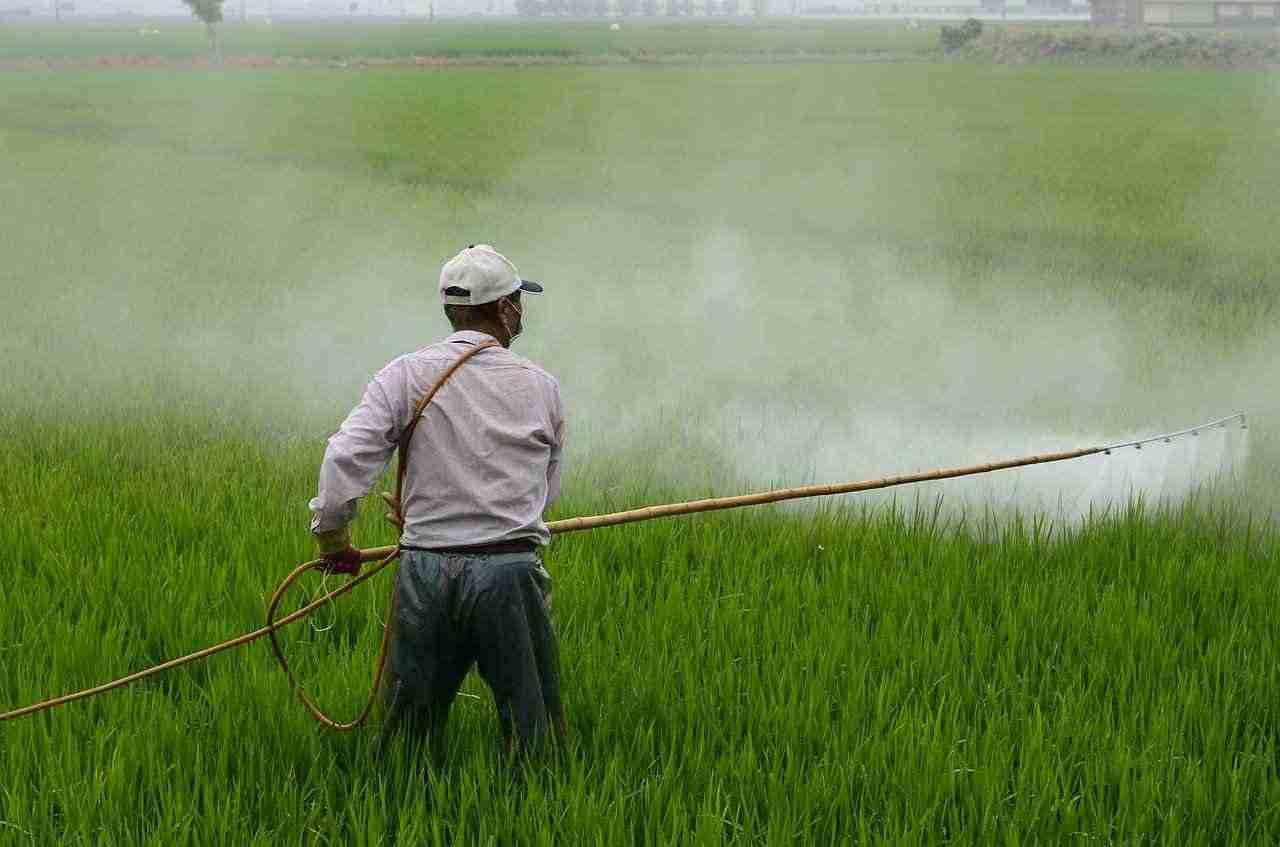 Farmworker applying pesticides