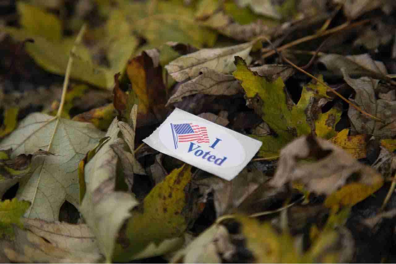 I Voted sticker on leaves