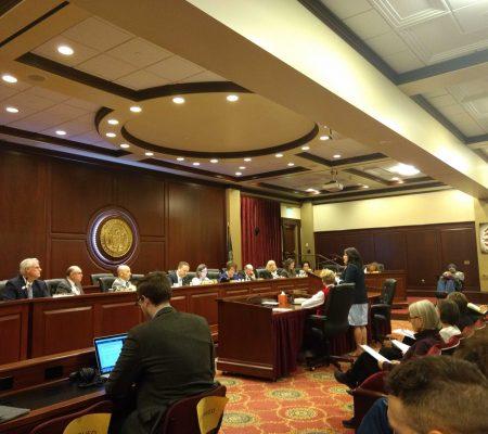 CVI staff member testifying in front of a legislative committee